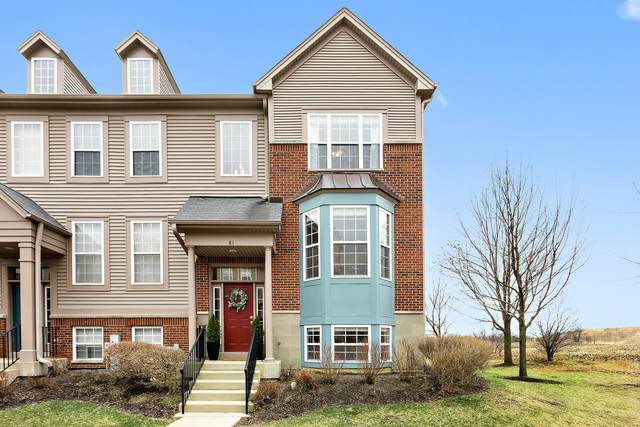 81 Thomas Court, Grayslake, IL 60030 (MLS #11046381) :: The Spaniak Team