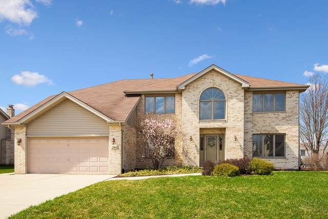 2803 Martin Court, New Lenox, IL 60451 (MLS #11046415) :: The Spaniak Team