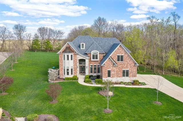 6320 Ravine Court, Yorkville, IL 60560 (MLS #11046614) :: O'Neil Property Group