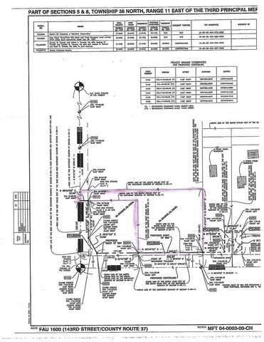 15550 W 143RD Street, Homer Glen, IL 60491 (MLS #11046863) :: RE/MAX IMPACT
