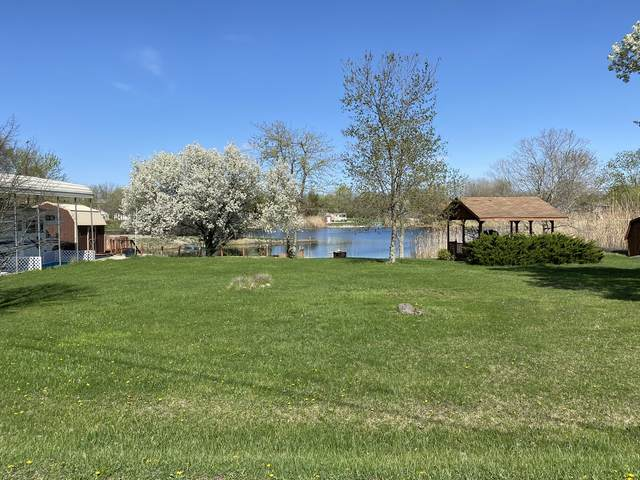 203 E Autumn Drive, Oakwood, IL 61858 (MLS #11047250) :: Ryan Dallas Real Estate