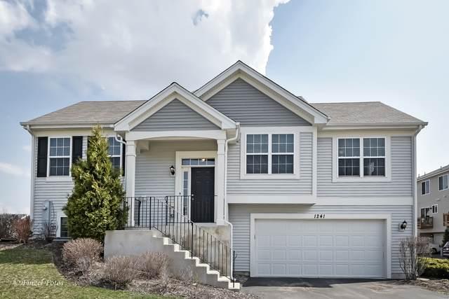 1241 Alta Vista Drive, Pingree Grove, IL 60140 (MLS #11047624) :: The Dena Furlow Team - Keller Williams Realty