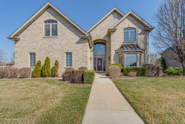 16495 Christopher Drive, Lemont, IL 60439 (MLS #11047890) :: The Spaniak Team