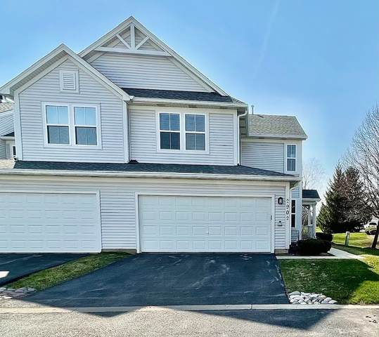 2902 Falling Waters Drive, Lindenhurst, IL 60046 (MLS #11047933) :: RE/MAX IMPACT