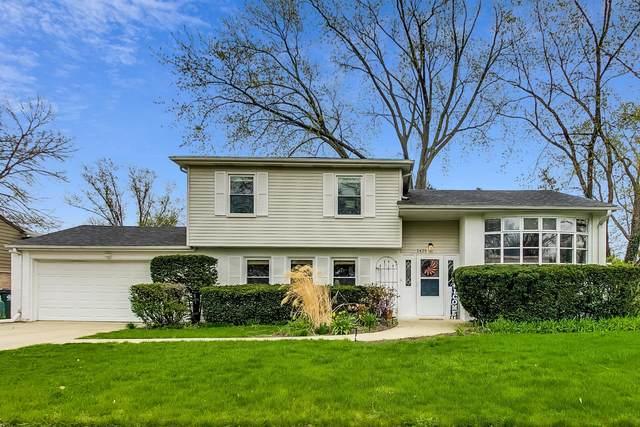 1425 E Rosita Drive, Palatine, IL 60074 (MLS #11048046) :: Helen Oliveri Real Estate