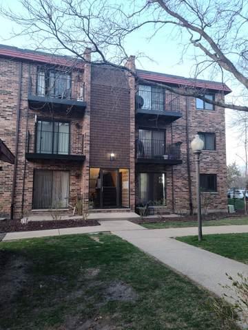 1771 W Algonquin Road 3B, Mount Prospect, IL 60056 (MLS #11048523) :: Helen Oliveri Real Estate