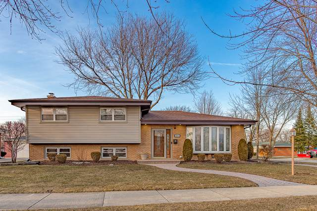539 Forest Preserve Drive, Wood Dale, IL 60191 (MLS #11048779) :: RE/MAX IMPACT