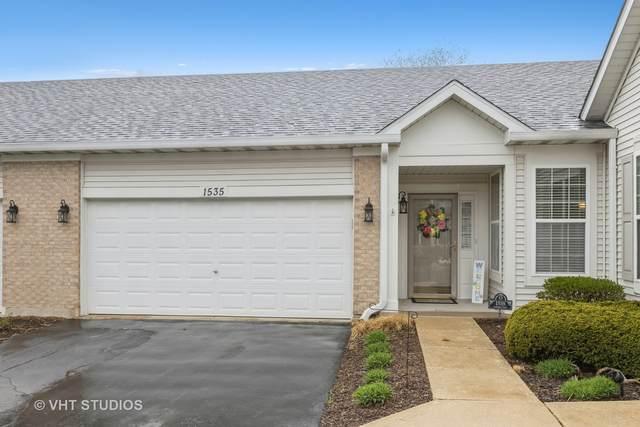 1535 W Ludington Circle, Romeoville, IL 60446 (MLS #11048864) :: The Dena Furlow Team - Keller Williams Realty