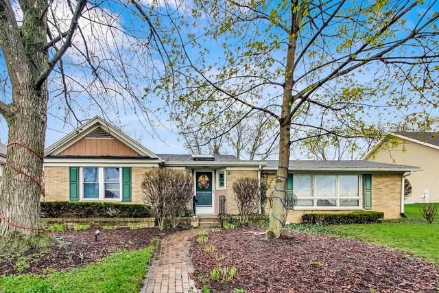 68 Park Avenue, Lake Zurich, IL 60047 (MLS #11048876) :: Ani Real Estate