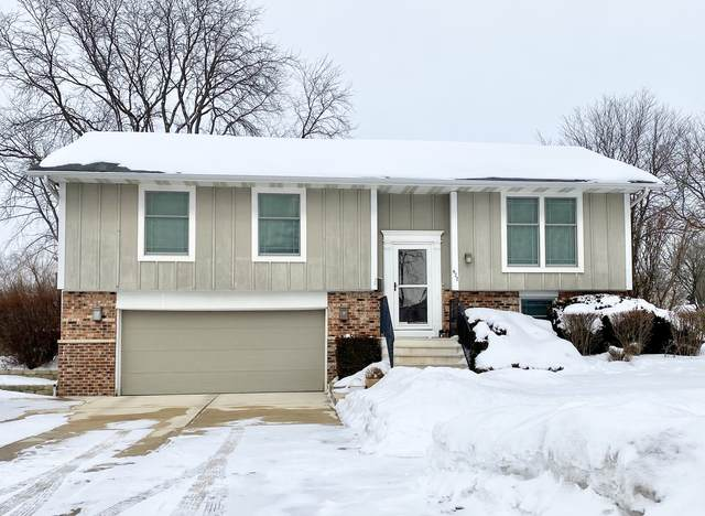 622 Newport Street S, Roselle, IL 60172 (MLS #11048900) :: The Perotti Group