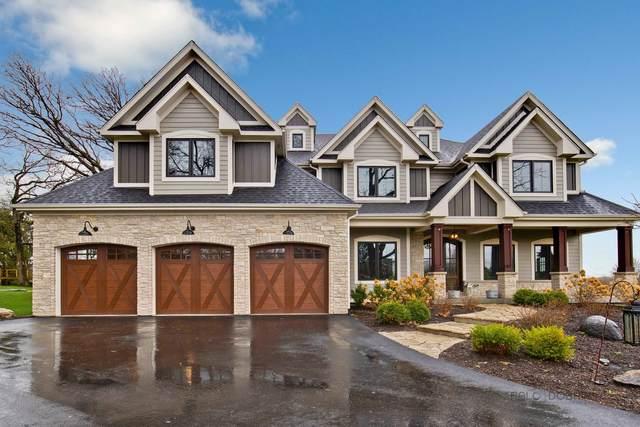 10N619 Oak Ridge Drive, Elgin, IL 60124 (MLS #11048906) :: The Perotti Group
