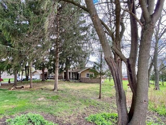 2595 Glenwood Dyer Road, Lynwood, IL 60411 (MLS #11049154) :: The Dena Furlow Team - Keller Williams Realty