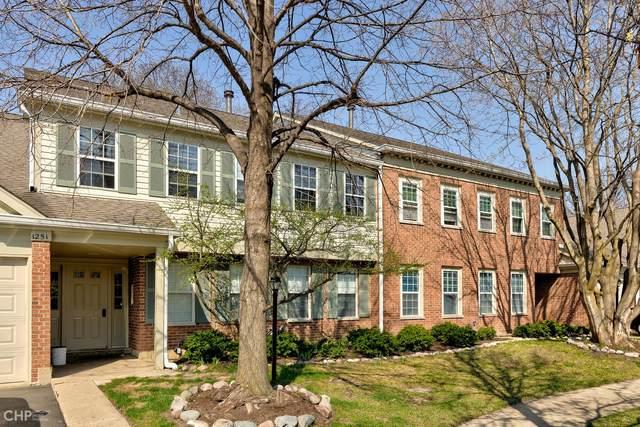 1251 Rosewood Court B2, Schaumburg, IL 60193 (MLS #11049280) :: Littlefield Group