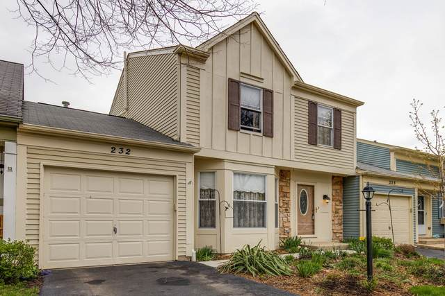 232 W Dartmoor Avenue, Palatine, IL 60067 (MLS #11049315) :: The Spaniak Team