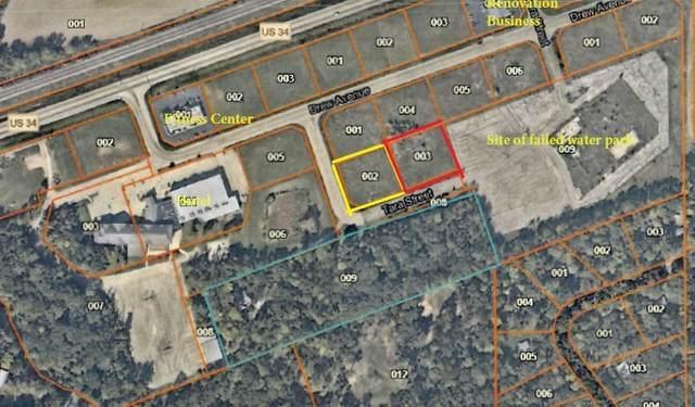 3860 Drew Avenue, Sandwich, IL 60548 (MLS #11049370) :: RE/MAX IMPACT