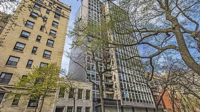 30 E Elm Street 20F, Chicago, IL 60611 (MLS #11049436) :: John Lyons Real Estate