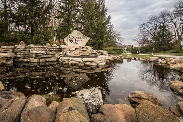 21601 Hampshire Place, Mundelein, IL 60060 (MLS #11049472) :: Helen Oliveri Real Estate