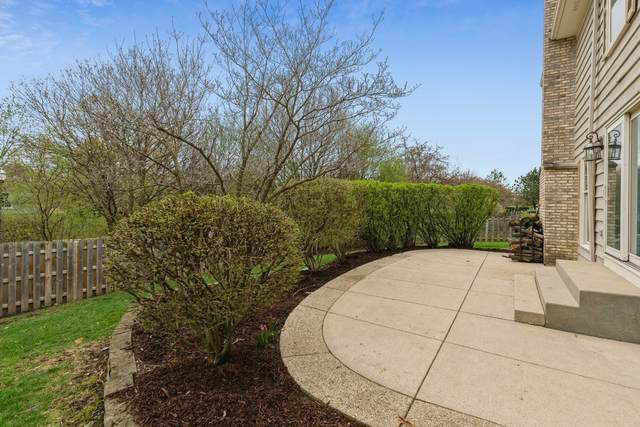 695 Williams Way, Vernon Hills, IL 60061 (MLS #11049506) :: The Wexler Group at Keller Williams Preferred Realty