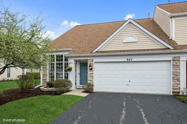 667 N Charter Hall Drive, Palatine, IL 60067 (MLS #11049637) :: The Spaniak Team