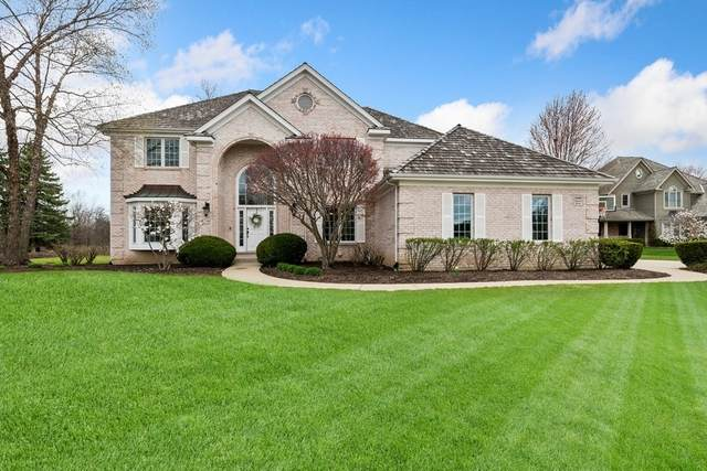 14584 N Somerset Circle, Green Oaks, IL 60048 (MLS #11049702) :: Suburban Life Realty