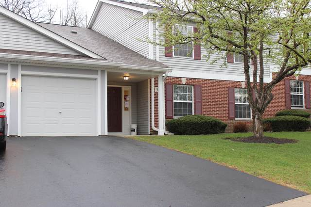 371 Woodview Circle C, Elgin, IL 60120 (MLS #11049719) :: Suburban Life Realty