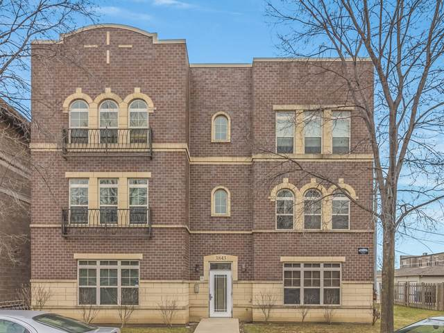 3843 S Langley Avenue #102, Chicago, IL 60653 (MLS #11049779) :: RE/MAX IMPACT