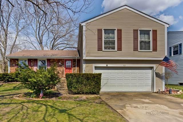 12 Cherokee Road, Vernon Hills, IL 60061 (MLS #11049790) :: Helen Oliveri Real Estate