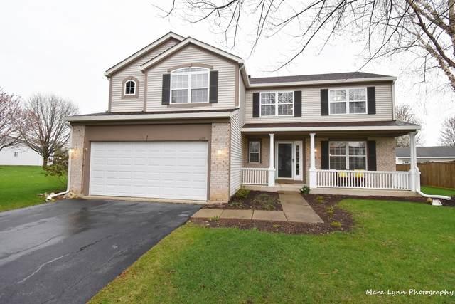 238 Paradise Parkway, Oswego, IL 60543 (MLS #11050036) :: O'Neil Property Group