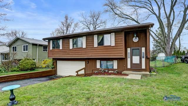 651 Pierce Court, Grayslake, IL 60030 (MLS #11050052) :: John Lyons Real Estate