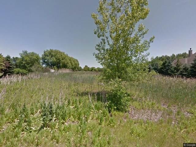 17843 S Crystal Lake Drive, Homer Glen, IL 60491 (MLS #11050088) :: John Lyons Real Estate
