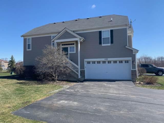 1183 Mark Court, Antioch, IL 60002 (MLS #11050141) :: John Lyons Real Estate
