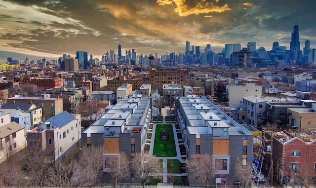 525 N Bishop Street 1C, Chicago, IL 60642 (MLS #11050177) :: John Lyons Real Estate