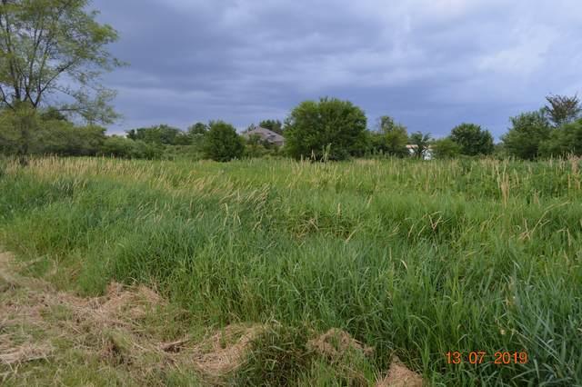 16235 S Peppermill Trail, Homer Glen, IL 60491 (MLS #11050285) :: RE/MAX IMPACT