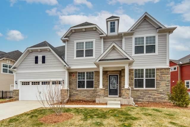 523 Council Circle, Vernon Hills, IL 60061 (MLS #11050336) :: Helen Oliveri Real Estate