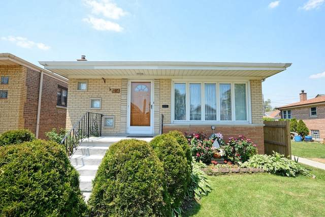 5246 S Kenneth Avenue, Chicago, IL 60632 (MLS #11050407) :: Helen Oliveri Real Estate