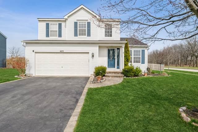 423 Benton Road, Lake Villa, IL 60046 (MLS #11050455) :: Helen Oliveri Real Estate
