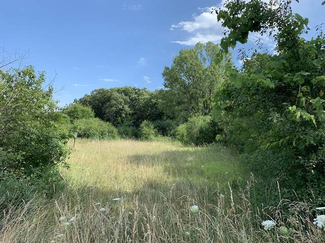 Lot 1 & 2 Jillian Court, Barrington, IL 60010 (MLS #11050548) :: Helen Oliveri Real Estate