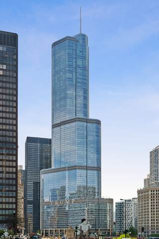 401 N Wabash Avenue 68A, Chicago, IL 60611 (MLS #11050664) :: Schoon Family Group
