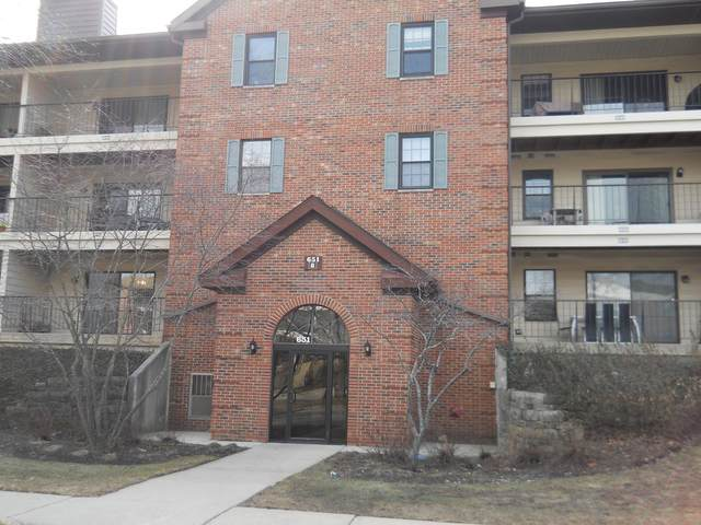 651 Hapsfield Lane #103, Buffalo Grove, IL 60089 (MLS #11050865) :: Helen Oliveri Real Estate
