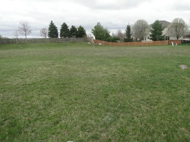16437 Harmon Lane, Plainfield, IL 60586 (MLS #11050957) :: RE/MAX IMPACT
