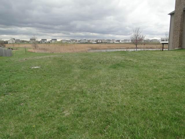 25508 W Rock Drive, Plainfield, IL 60586 (MLS #11050976) :: Carolyn and Hillary Homes