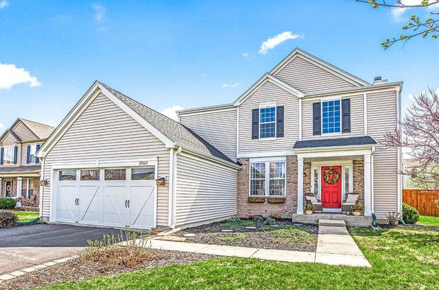 25023 Wright Lane, Plainfield, IL 60585 (MLS #11051028) :: Littlefield Group