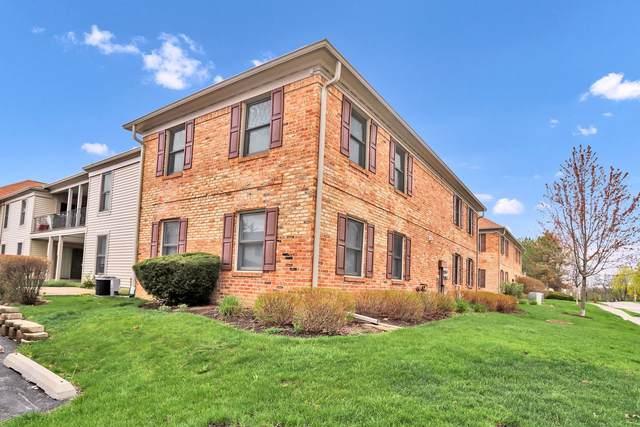 1700 Fayette Walk F, Hoffman Estates, IL 60169 (MLS #11051315) :: RE/MAX IMPACT