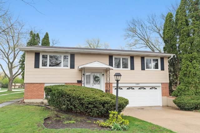 1009 E Alder Lane, Mount Prospect, IL 60056 (MLS #11051423) :: Angela Walker Homes Real Estate Group