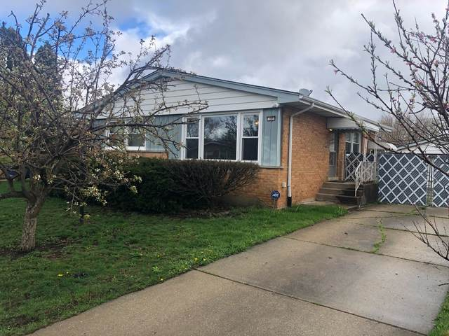 185 Kathleen Lane, Chicago Heights, IL 60411 (MLS #11051666) :: Helen Oliveri Real Estate