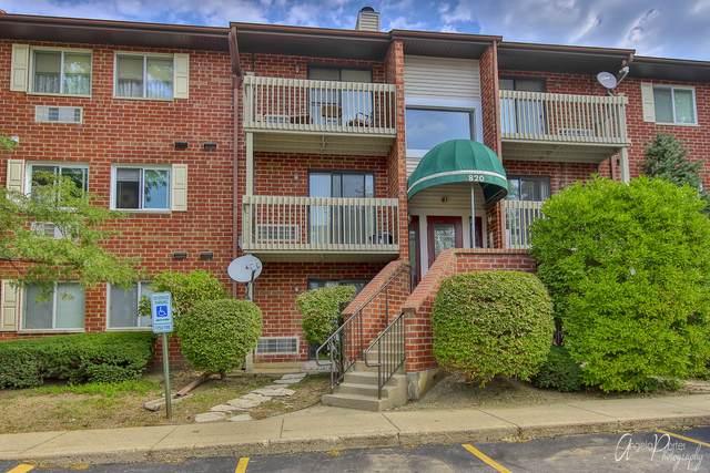 820 N Lakeside Drive 1B, Vernon Hills, IL 60061 (MLS #11051733) :: Helen Oliveri Real Estate