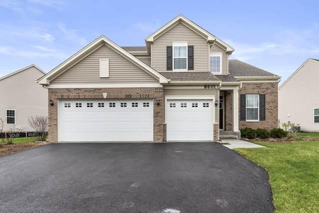 8601 Buckingham Road, Joliet, IL 60431 (MLS #11051743) :: Helen Oliveri Real Estate