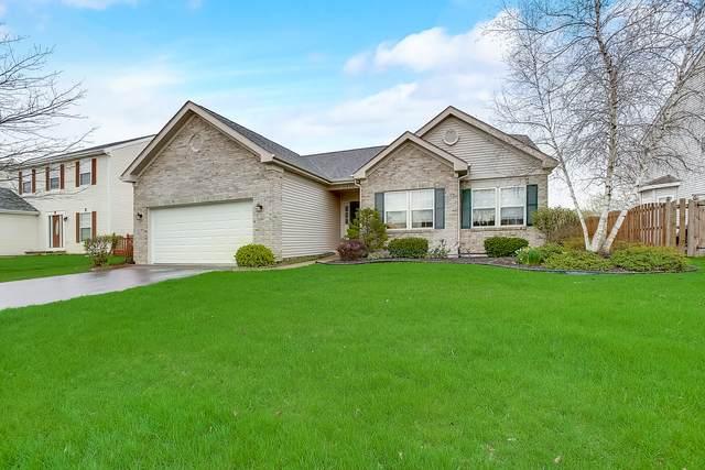 31531 N Pine View Boulevard, Lakemoor, IL 60051 (MLS #11051784) :: Lewke Partners