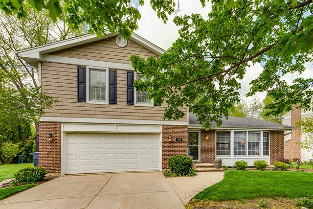 508 Juniper Parkway, Libertyville, IL 60048 (MLS #11051960) :: Helen Oliveri Real Estate