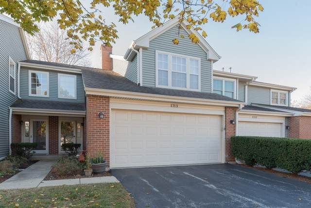 1713 W Orchard Place #1713, Arlington Heights, IL 60005 (MLS #11052063) :: Helen Oliveri Real Estate
